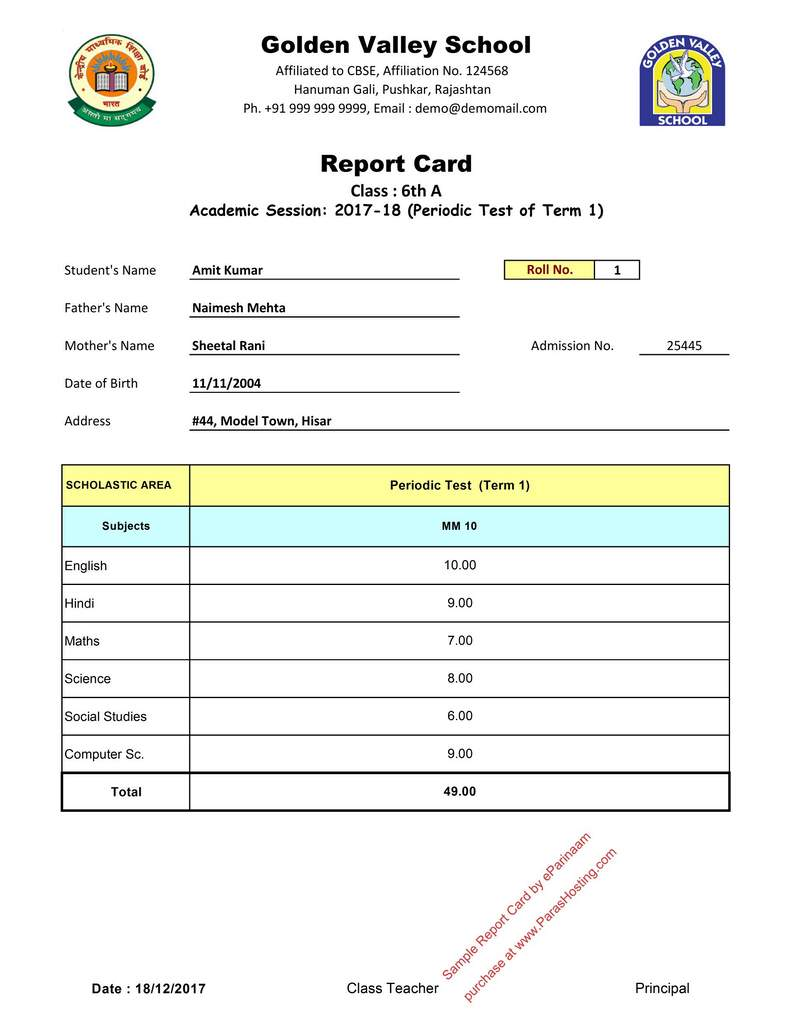 fake report card templates